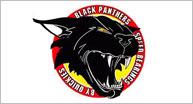 Black Panther's