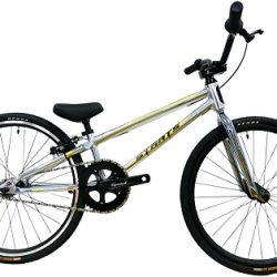 "Staats Superstock 20"" Mini Complete Bike - Polished"